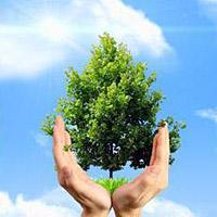 Почему нужно беречь природу?